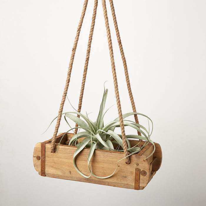 Brick Mould Hanger - 12.5 Inch - House Plant Shop