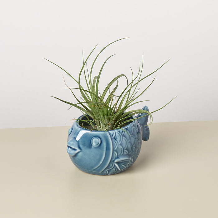 Small Animal Planter 'Fish'
