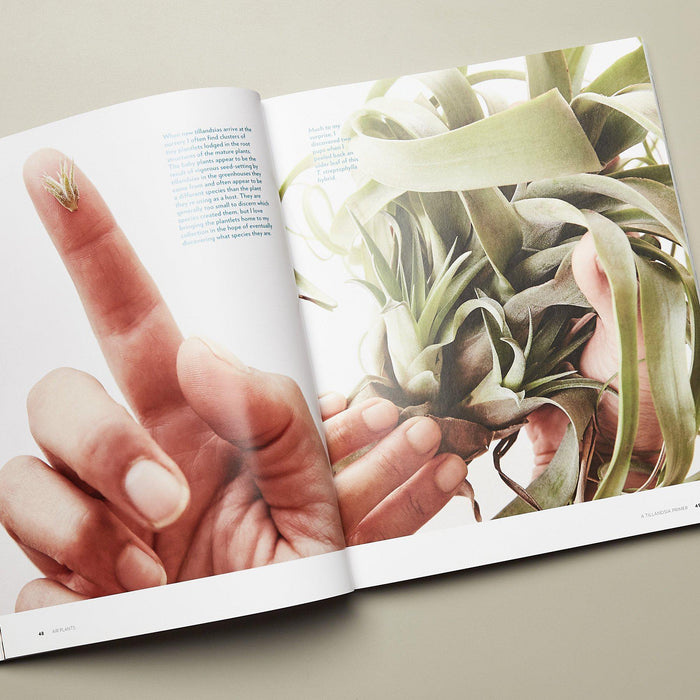 Book - Air Plants