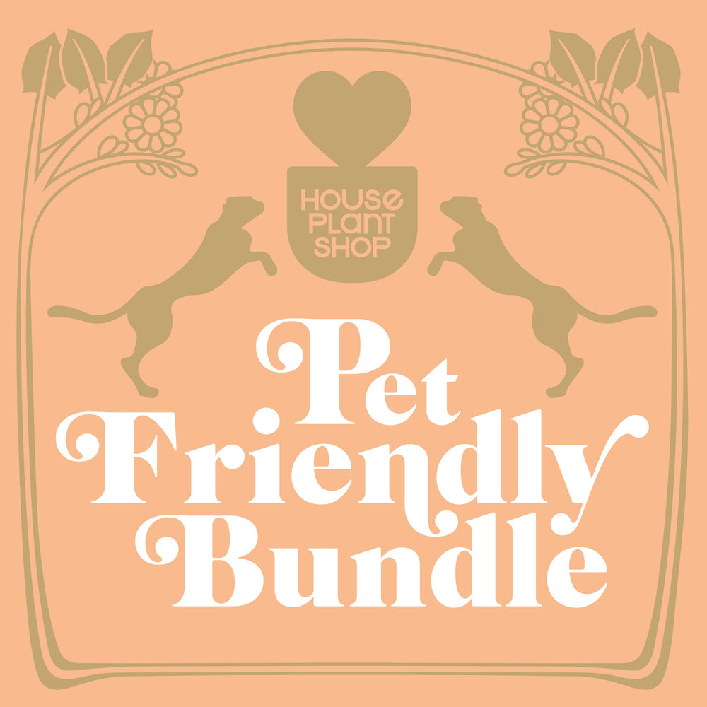 Pet Friendly Variety Bundle