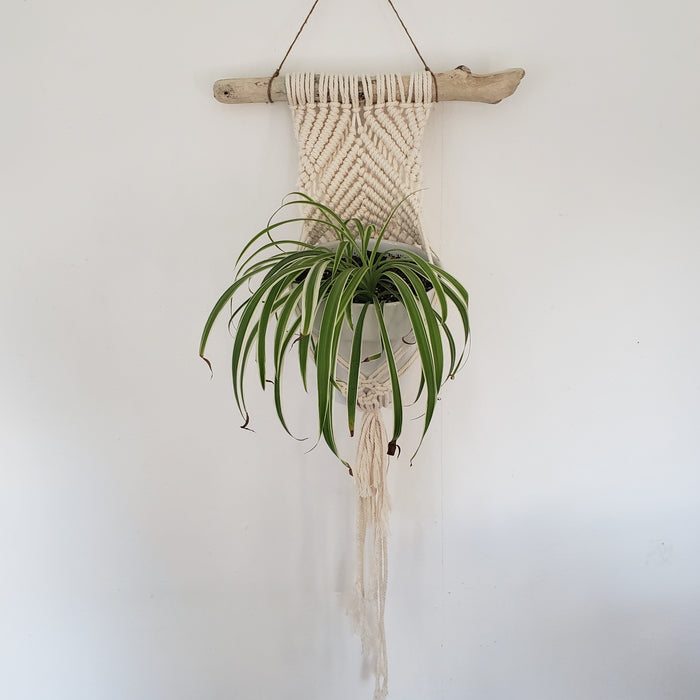 Large Wall Macrame Hanger - The Fiber Almanac