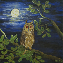 """The Wise Old Owl"""