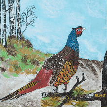 """Pheasant""  (#1 in series of 5)"