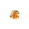 GOLDEN ROSE LAPEL PINS