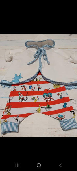 July/Aug 2020 Preorder - Fabric Dr. Seuss Cat in The Hat Stripes ON VARIOUS BASES