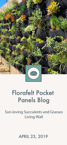 Florafelt Pocket Planter Blog