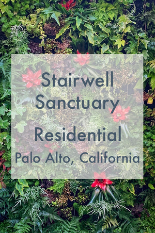 Stairwell Sanctuary Living Wall