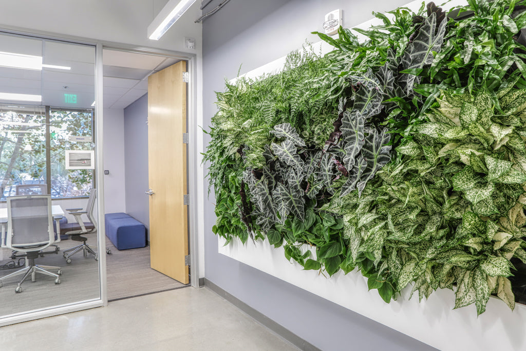 Entryway Indoor Living Wall - Side View