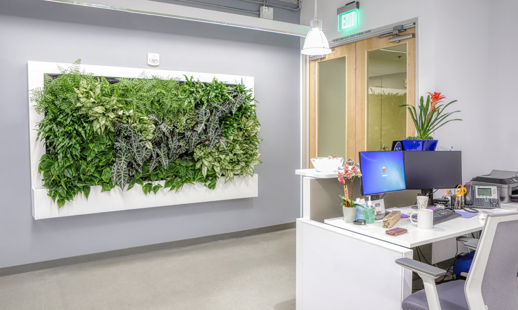 Office Living Wall Entryway View