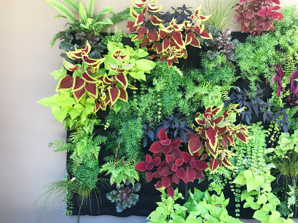 Custom Fireside Leafy Living Wall