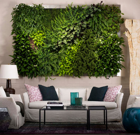 Living wall in living room