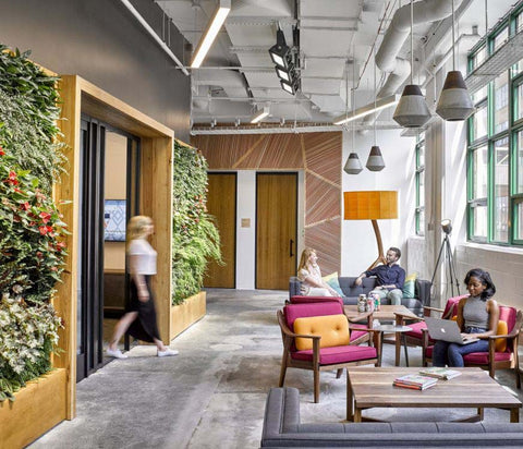 Office space with living wall