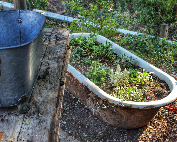 Outdoor Old Bath Planter