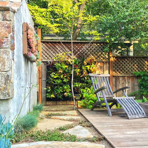 Outdoor living wall garden sanctuary