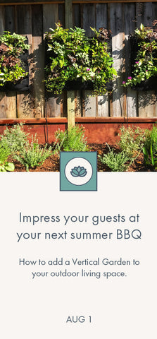 How to create a Vertical Garden for your next summer BBQ