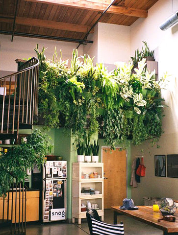 Indoor Living Wall Pocket Planter