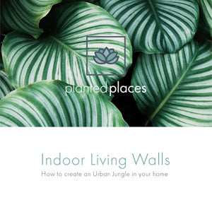eBook-Indoor Living Walls Cover Page