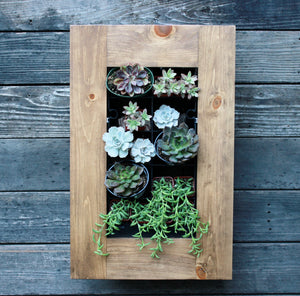 "15.5 x 24"" Framed Succulent Planter Kit Diagonal Design Mounted on Wall"
