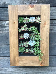 "15.5 x 24"" Framed Succulent Planter Kit Creative Design Mounted on Wall"