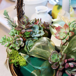 DIY Succulent Basket Kit