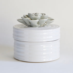 Succulent Ceramic Canister Side View