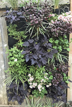 English Garden Living Wall - 24 pocket planter hanging