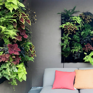 Fireside living walls in patio setting