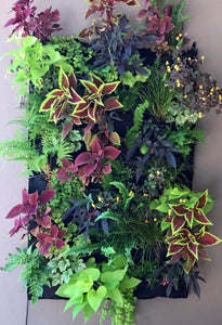 Fireside 24 pocket living wall with irrigation