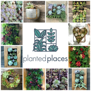 Planted Places Gift Card