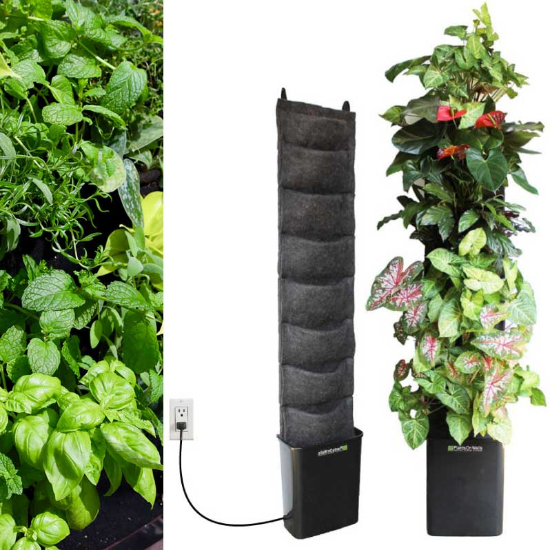 Herbs And Edibles Leafy Living Wall   8 Pocket Planter ...
