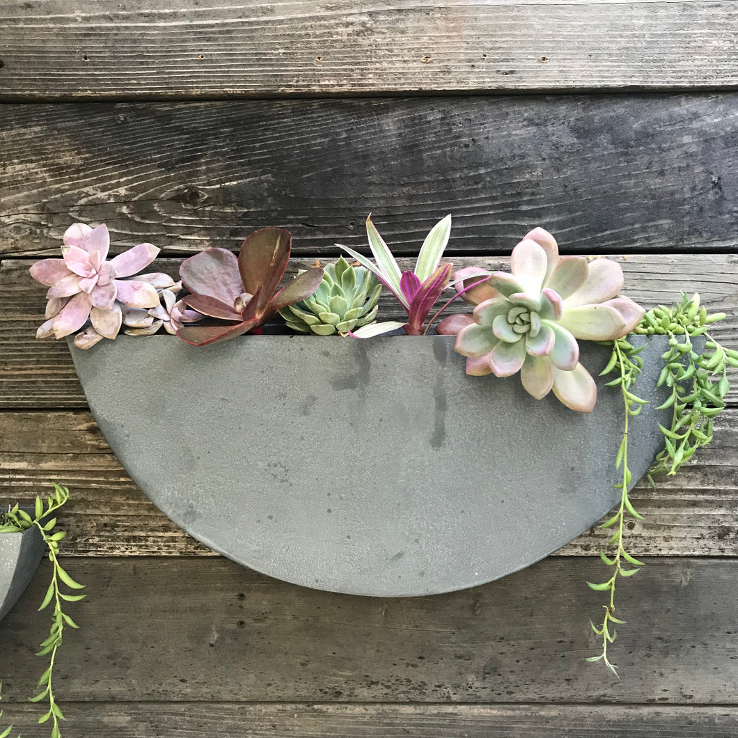 Zinc Half- Circle Wall Garden Bundle  - Plants + XL Planter