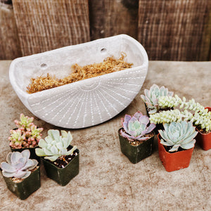 Large cement planter kit