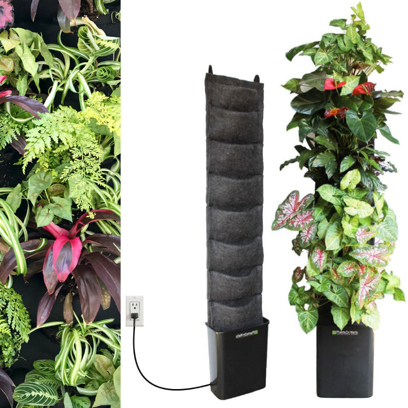 Rainforest 8 pocket compact indoor vertical garden kit