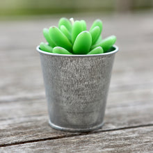 Potted Succulent Candle Variety 2
