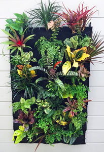 Tropical Living Wall - 24 Pocket Planter