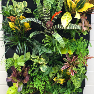 Tropical Leafy Living Wall - 24 pocket planter