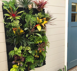 Tropical Living Wall 24 pocket planter hung outside