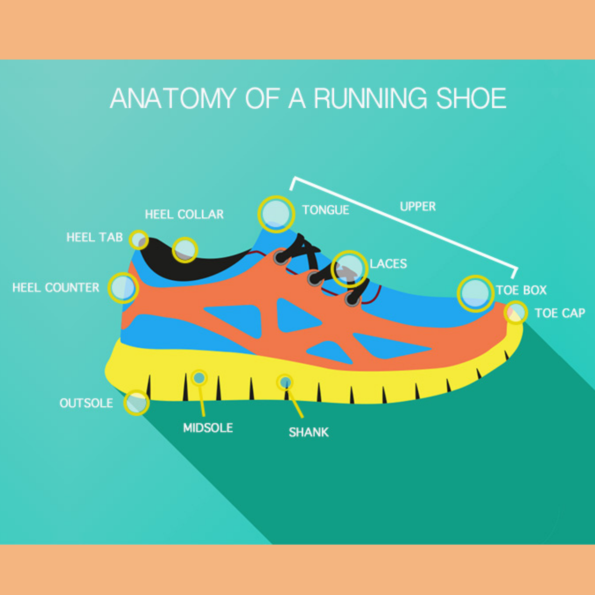 Your Most Important Piece Of Running Equipment, Your Shoes!