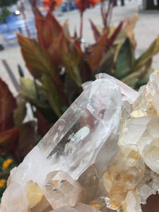 Himalayan Golden Healer Quartz from India