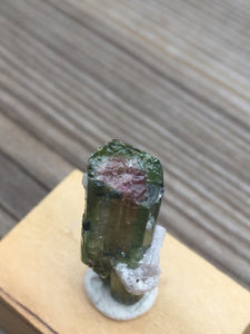 Watermelon Tourmaline with Lepidolite from Brazil
