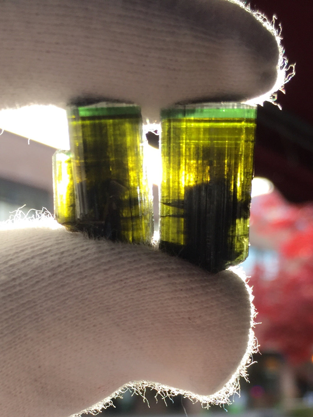 Tourmaline pair from Stak Nala Pakistan