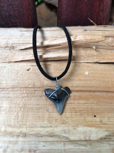 Shark Tooth and Leather Necklaces