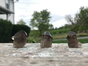 Smoky Quartz Points, Set of Three (3)