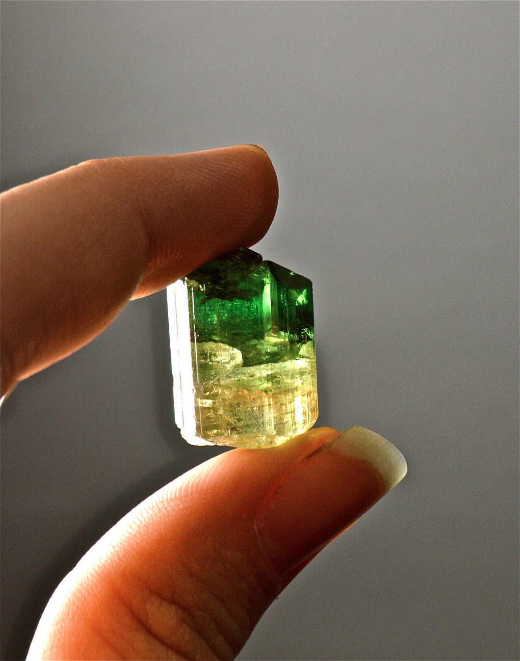 Tourmaline, Bi-color, From Brazil