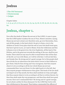 English Parallel Bible No5