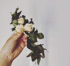 dried flower crown. dried roses and foliage crown. delivery nz wide