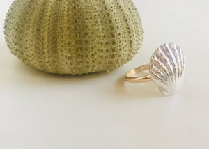 Sunrise Shell Ring with Wings