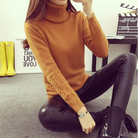 Women Turtleneck Winter Sweater Women Long Sleeve Knitted Women Sweaters