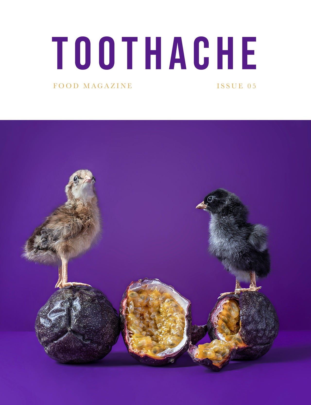 Toothache Magazine issue 5 cover