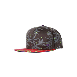 Niko Snapback - Grey/Red